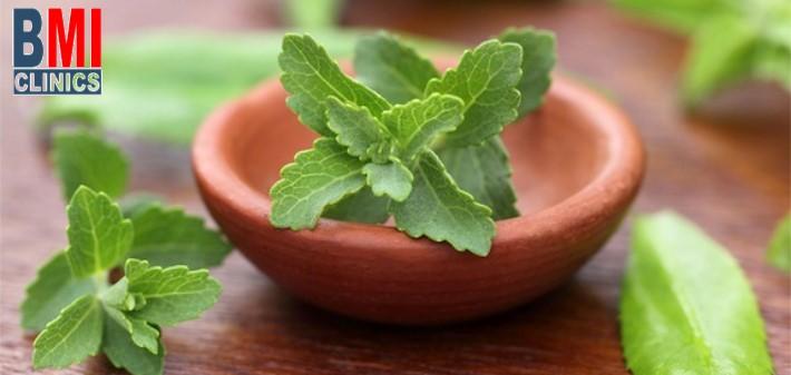 9a6b2903f فوائد ومخاطر نبات ستيفيا - عيادة الدكتور ناجي جان صفا