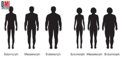 أنواع الجسم و تقليل الوزن تبعاً لها - ما هي أنواع الجسم؟